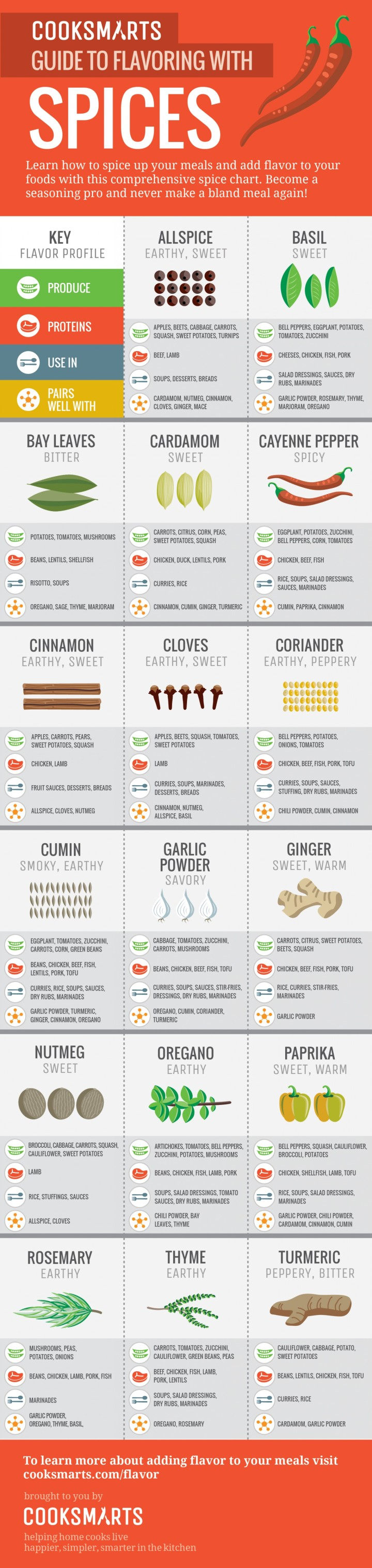 guide-to-flavoring-with-spices-vertical_54340cd247473_w1500